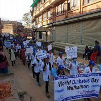 World-diabetes-day-2017 (9)